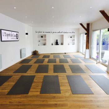 cours de yoga l 39 esprit de lau. Black Bedroom Furniture Sets. Home Design Ideas